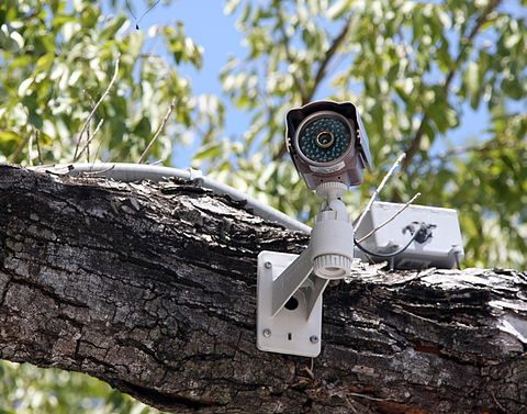 3 Effective Ways To Stop Intruders Using Home Security Devices