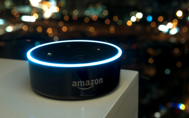How Are Customized Amazon Alexa Skills Working In The Market?