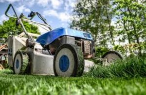 5 Gardening Products You Should Stop Using Right Now