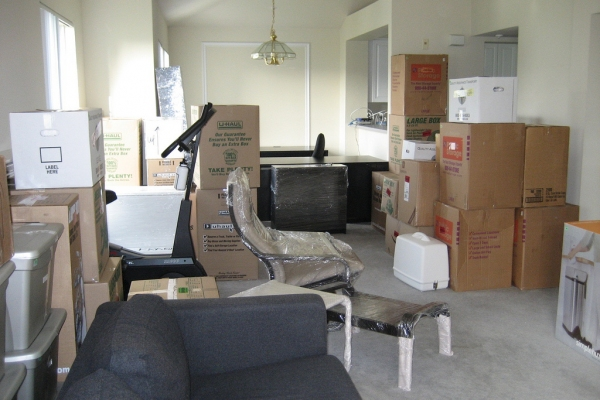 Moving Season Is Near - Things You Should Consider Before Moving
