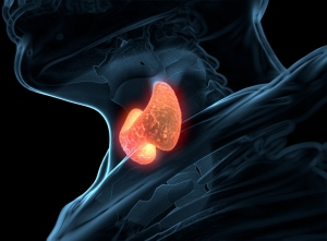 Thyroid Cancer- Its Symptoms and Risk Factors